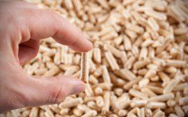 Czy Rząd wprowadzi normy dla pelletu?