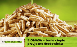 Czym jest biomasa?