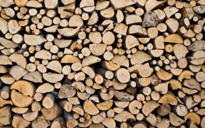 Jakie drewno kominkowe kupić?