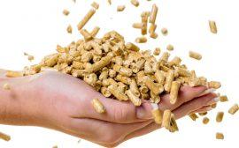 Jak wybrać dobry pellet?