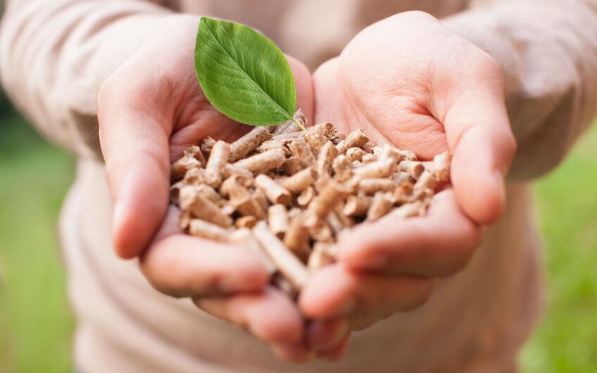 Biomasa – ogrzewanie z przyszłością