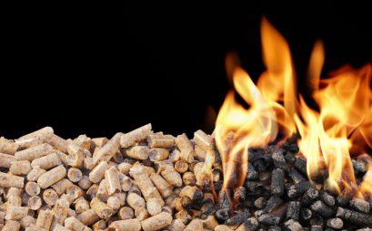 Czym kierować się wybierając pellet drzewny?
